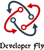 Developer Fly